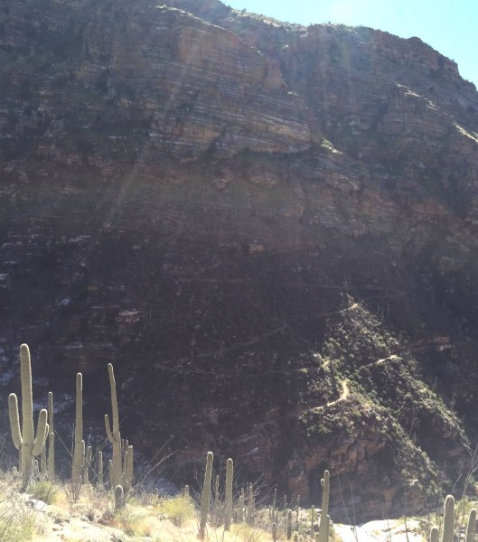 Can you see the switchbacks in the trail we hiked?