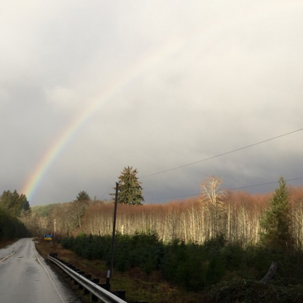 On the way to Neah Bay, we saw a bald eagle fly under this rainbow. It was indeed a harbinger of breathtaking scenes to come.