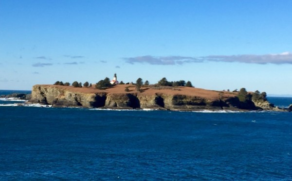 At the end of the trail, which feels like it's at the end of the earth, we had a crystal clear view of the Cape Flattery Light, on Tatoosh Island, about half a mile from the coast.