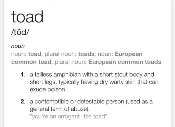 Thank you, Google. I'm not sure which definition I find more pleasing. Or accurate.