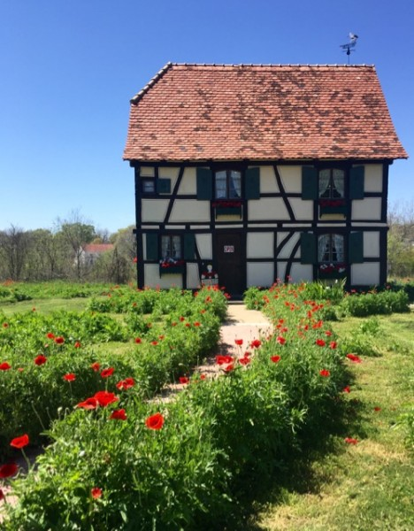 We stopped by the famous Steinbach Haus, built in France in the 17th century, shipped to Castroville and rebuilt in the early part of this century. It now serves as the town's welcome center.
